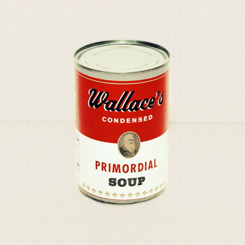 Wallaces-Condensed-Soup_Photographer-Dallas-Lillich