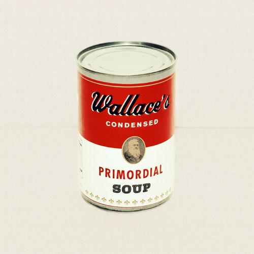 Wallaces-Condensed-Soup_Photographer-Dallas-Lillich